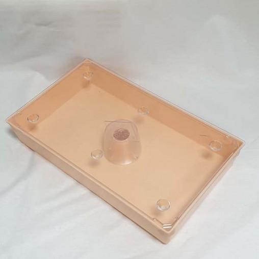 Nourrisseur rectangulaire pour ruche - 2,5 litres